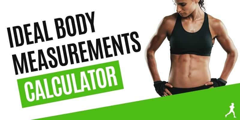 Ideal Body Measurements Calculator